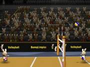 750_Bunnylimpics_Volleyball