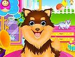 254_Adopted_Puppy_SPA_Makeover