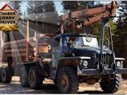 441_Timber_Lorry_Driver